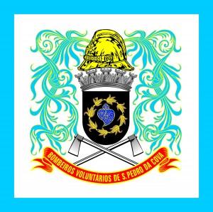 BV S PEDRO DA COVA logo
